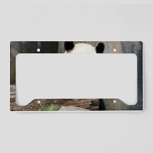 panda3 License Plate Holder