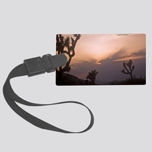 JoshuaSunsetcovsm Large Luggage Tag