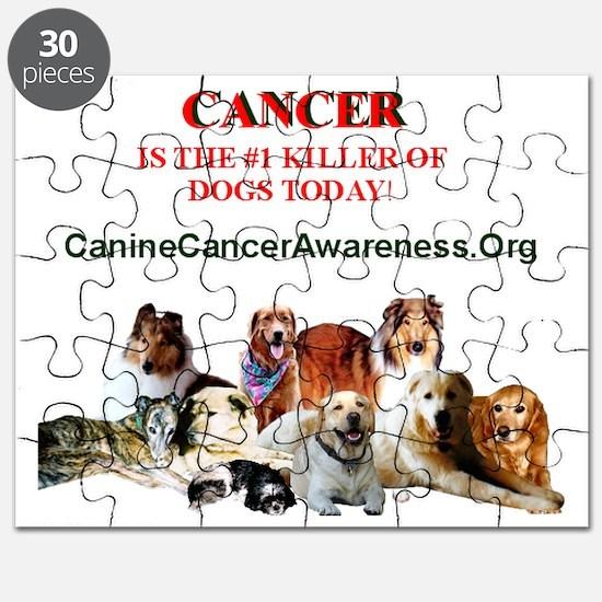 fundraiser-shirts-adobe Puzzle