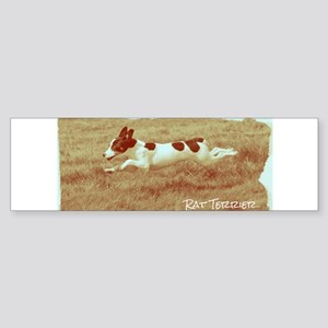 Flying Rat Terrier Bumper Sticker