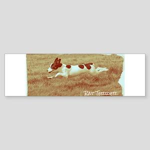 Flying Rat Terrier Bumper Sticker