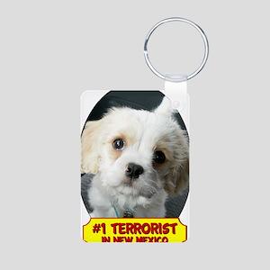 Terrorist5x2 Aluminum Photo Keychain