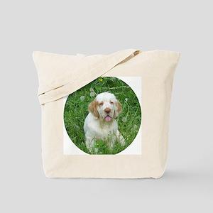 DSCN0044ffff Tote Bag