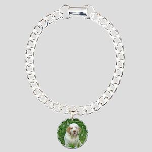 DSCN0044ffff Charm Bracelet, One Charm