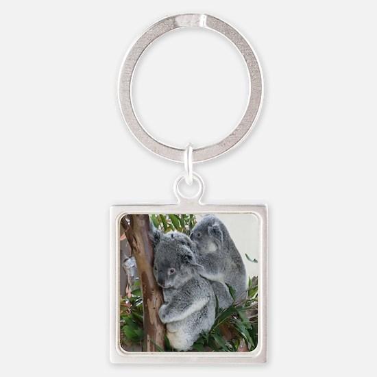 Koala-MP Square Keychain