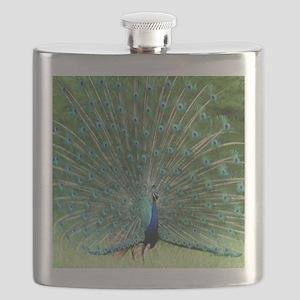peacock-MP Flask