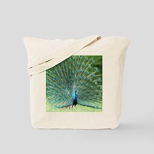 peacock-MP Tote Bag