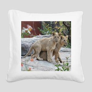 lion cubs-MP Square Canvas Pillow