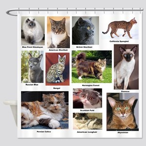 Cat Breed Full Color Shower Curtain