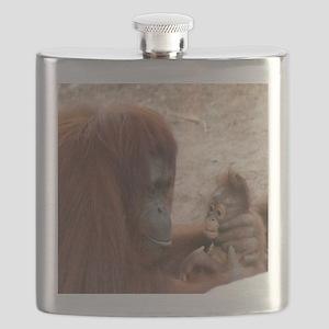 orang mombaby-cstr Flask