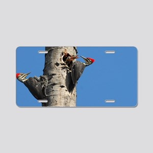 14x6_print Aluminum License Plate