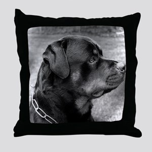 2-Mauser1 Throw Pillow