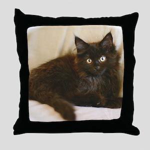 black-smoke-maine-coon-kitten1 Throw Pillow