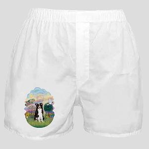 Cloud Angel - Border Collie Boxer Shorts