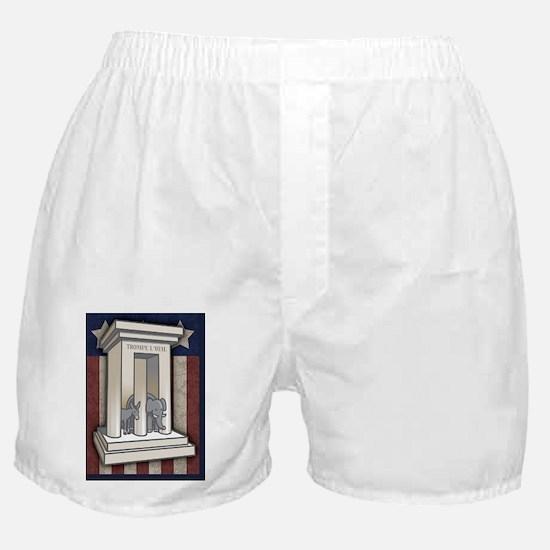 3-prong-columns-CRD Boxer Shorts