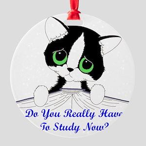 studynowcat Round Ornament