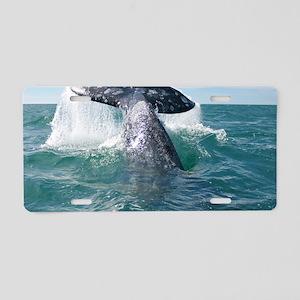 2-IMG_9023 Aluminum License Plate