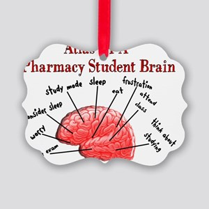 Atlas of Pharmacy Student Brain Picture Ornament