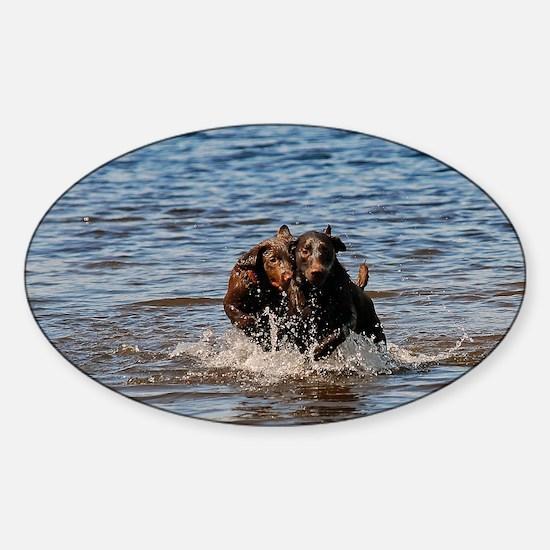 14x10_print Sticker (Oval)