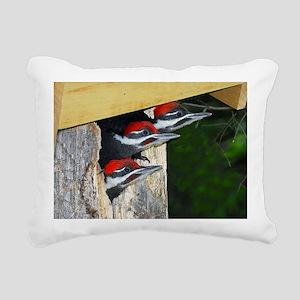 6x4_pcard Rectangular Canvas Pillow