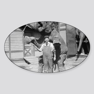 Elephant Performs a Trick Sticker (Oval)