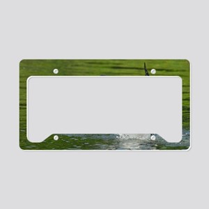 14x6_print 3 License Plate Holder