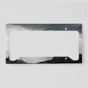 alexandria postcard License Plate Holder