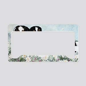 Bernese Five in a Box License Plate Holder