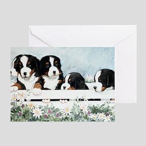 Bernese Five in a Box Greeting Card