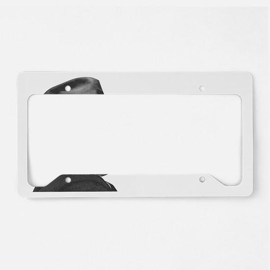 FDR1 License Plate Holder