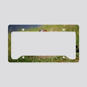 DSC_0028_3 License Plate Holder
