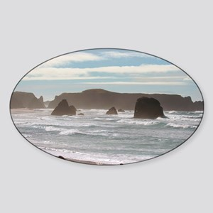 IMG_6507 Sticker (Oval)