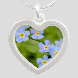 DSCN3394 Silver Heart Necklace