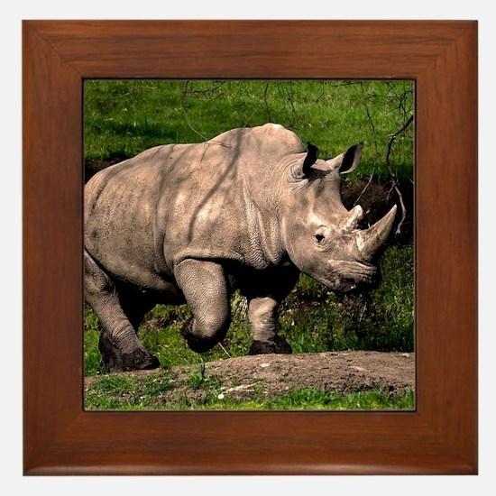 (2) Rhino on Hill Framed Tile