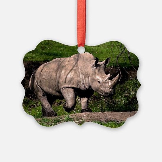 (3) Rhino on Hill Ornament