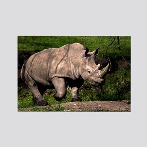 (3) Rhino on Hill Rectangle Magnet