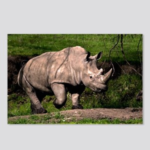 (3) Rhino on Hill Postcards (Package of 8)