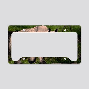 (1) Rhino on Hill License Plate Holder