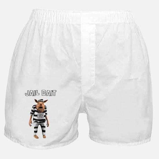 2-jailbait_lg Boxer Shorts