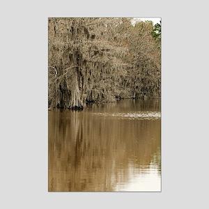 Caddo Lake, Texas Souvenir Mini Poster Print