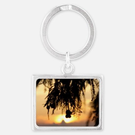 IMG_5175 Landscape Keychain