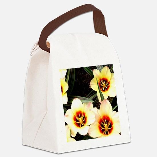 Girlfriend flowers at Keukenhof Canvas Lunch Bag