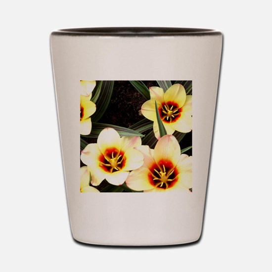 Girlfriend flowers at Keukenhof Shot Glass