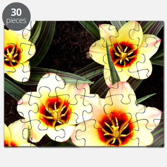 Girlfriend flowers at Keukenhof Puzzle