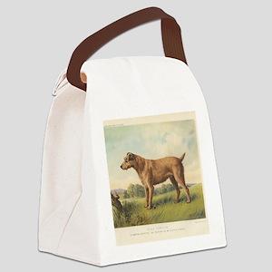 Irish Terrier antique print Canvas Lunch Bag