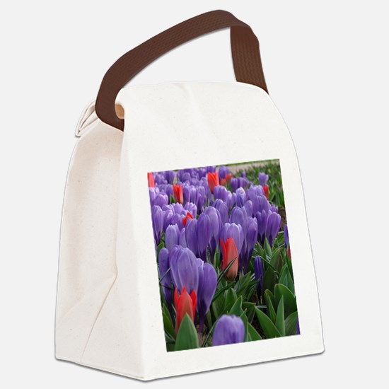 Purple  Red Tulips at Keukenhof G Canvas Lunch Bag