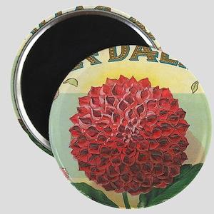 Dahlia Flower antique label Magnet
