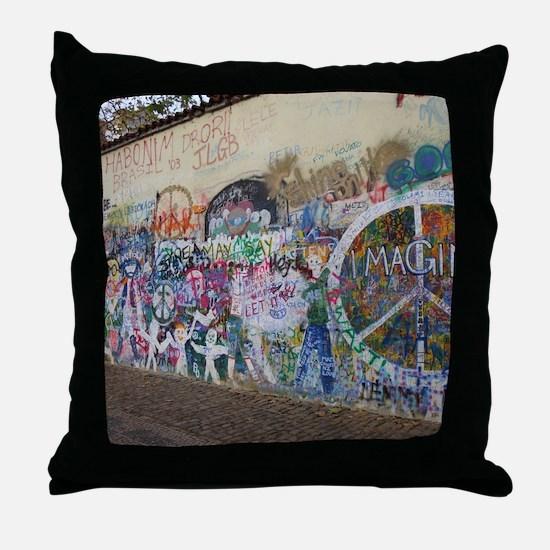 DSC00794 Throw Pillow