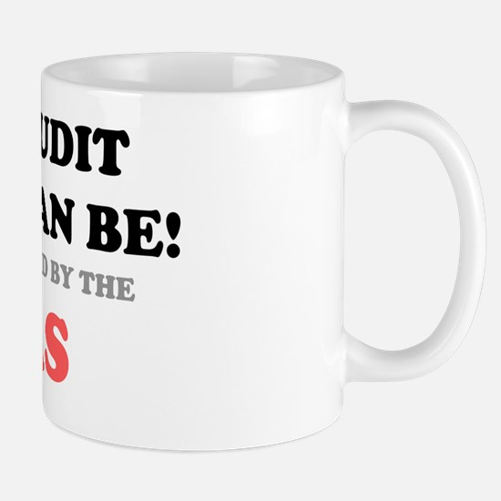 BE AUDIT IRS USA Mug