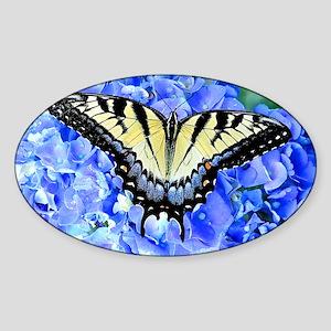 Eastern Yellow Tiger Swallowtail Bu Sticker (Oval)